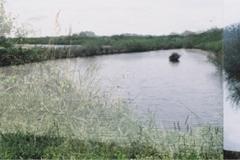 03_bassin_v2
