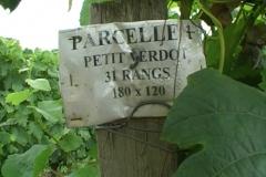 16_margaux_parcelle